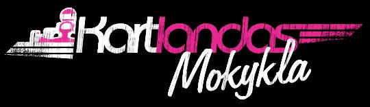 Kartingų mokykla Logo